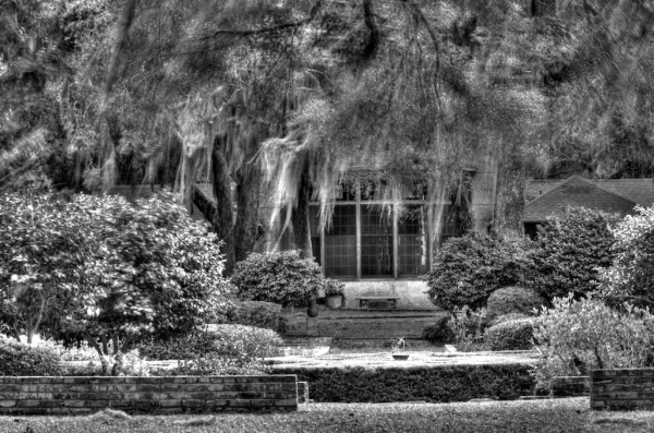 A view of the Musgrave Plantation great house. Photo by Robert Leedy.